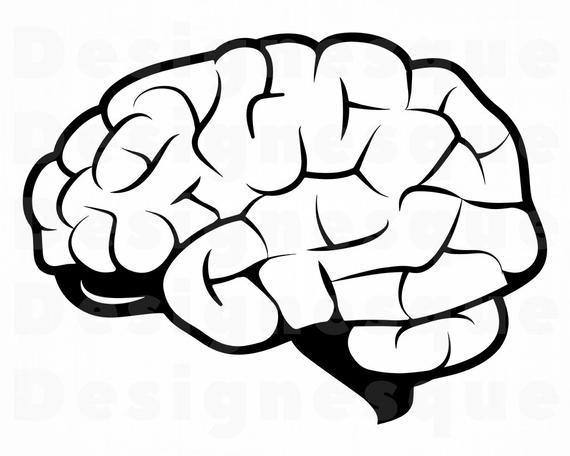 brain svg #1194, Download drawings