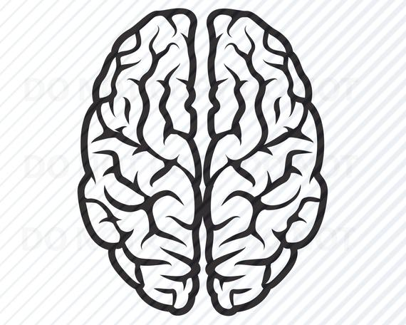 brain svg #1196, Download drawings