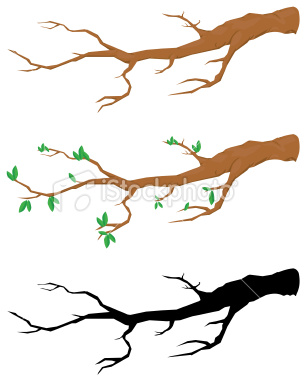 Branch clipart #20, Download drawings
