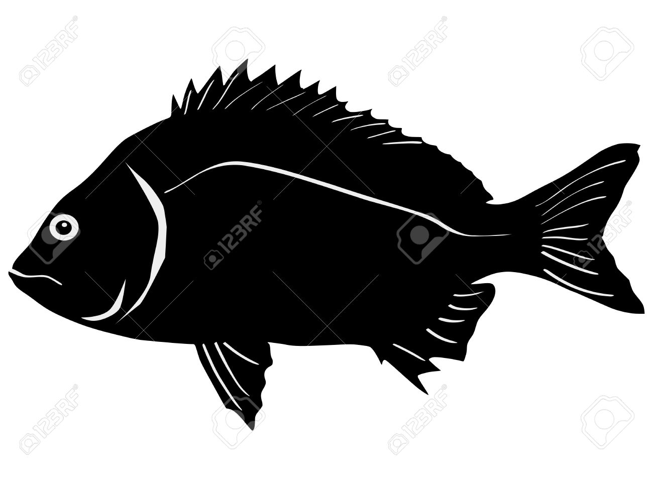Bream clipart #6, Download drawings
