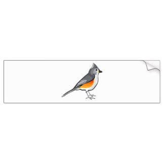 Bridled Titmouse clipart #10, Download drawings