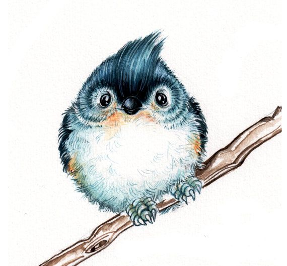 Bridled Titmouse clipart #7, Download drawings