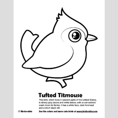 Titmouse coloring #12, Download drawings