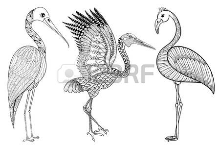 Brolga clipart #15, Download drawings