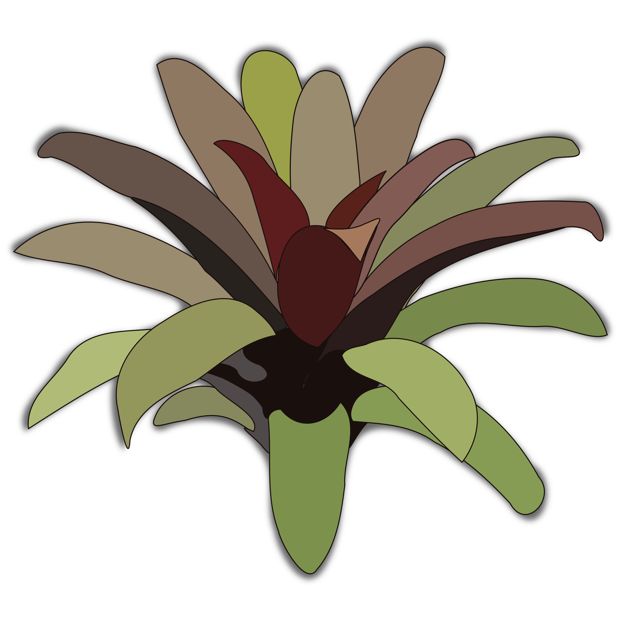 Bromelia svg #18, Download drawings