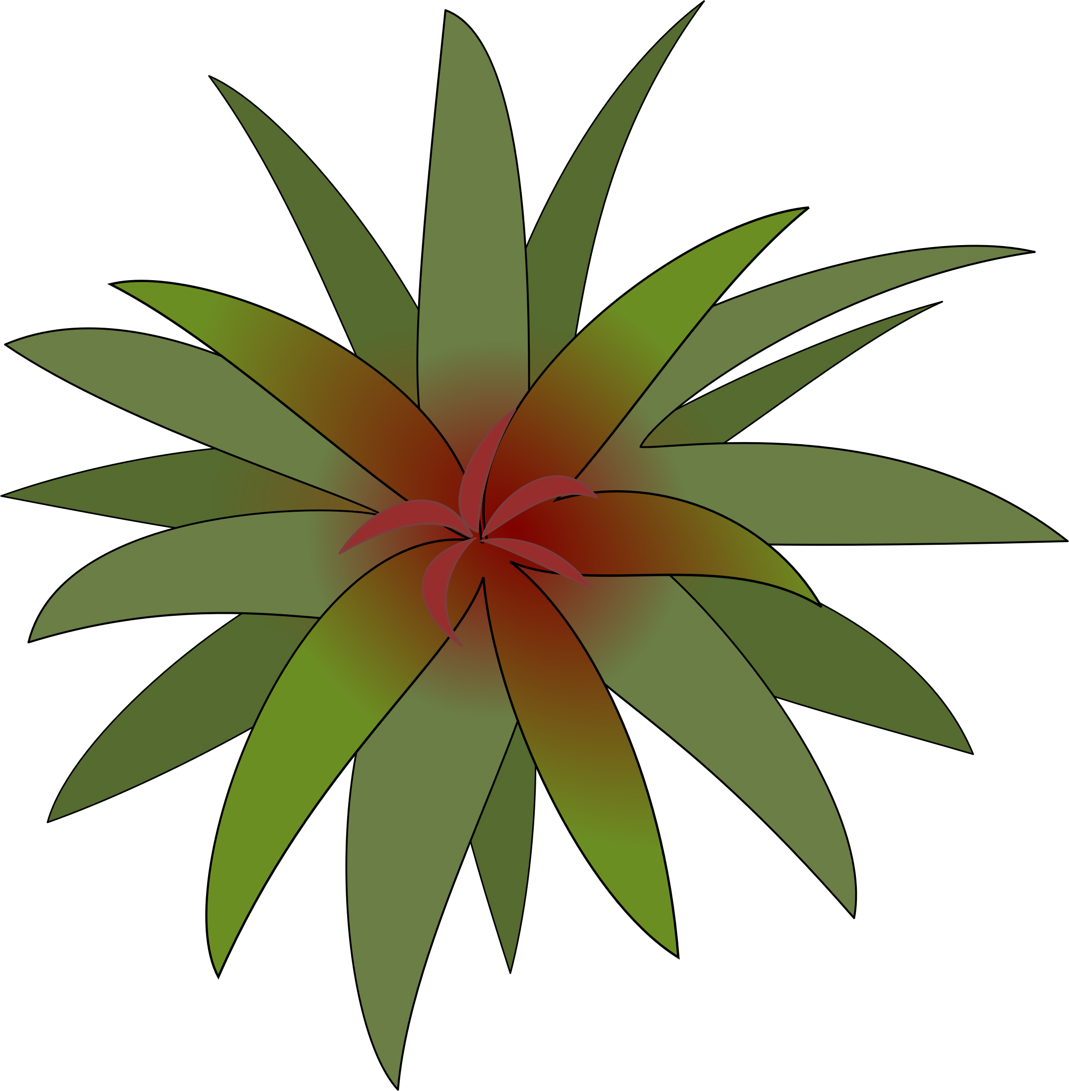 Bromelia svg #16, Download drawings