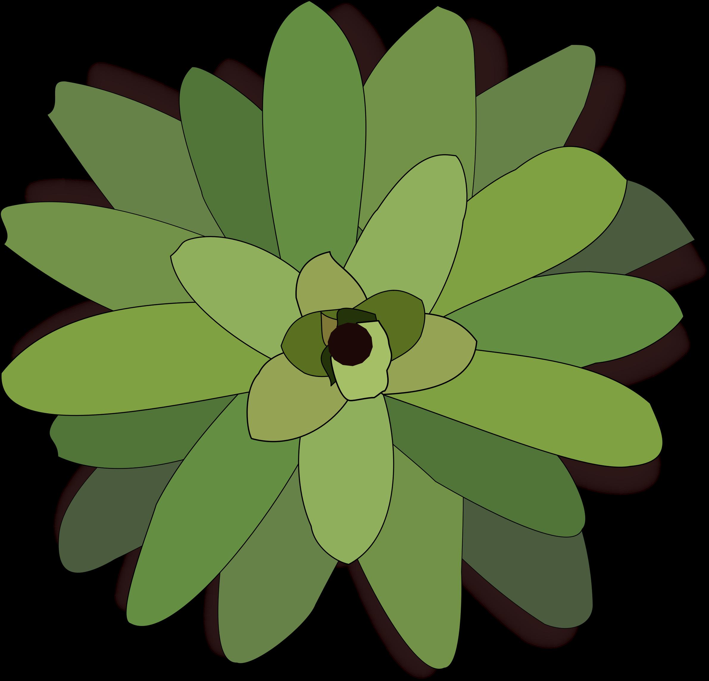 Bromelia svg #10, Download drawings