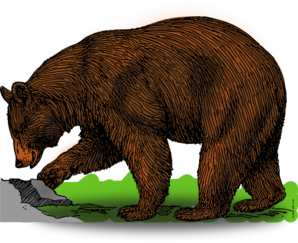 Brown Bear clipart #8, Download drawings