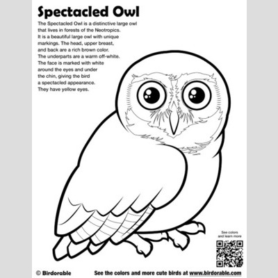 Spectacled Owl Coloring Download Spectacled Owl Coloring