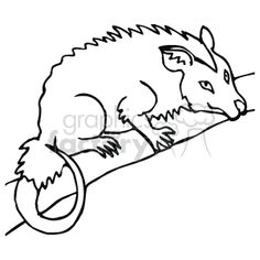 Brushtail Possum clipart #11, Download drawings