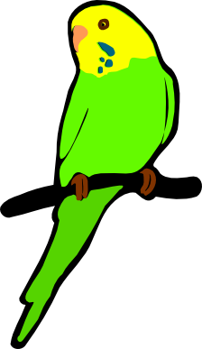 Budgie svg #20, Download drawings