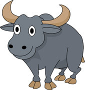 Buffalo clipart #9, Download drawings