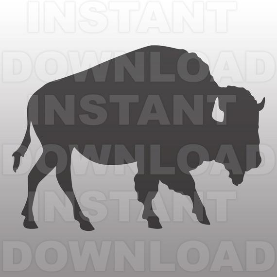 Buffalo svg #237, Download drawings