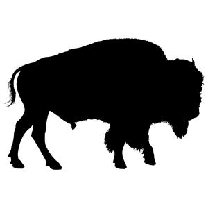 Buffalo svg #230, Download drawings