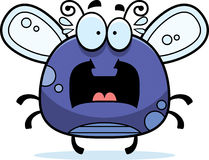 Bug clipart #16, Download drawings