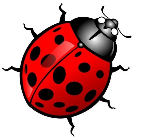 Bugs clipart #14, Download drawings