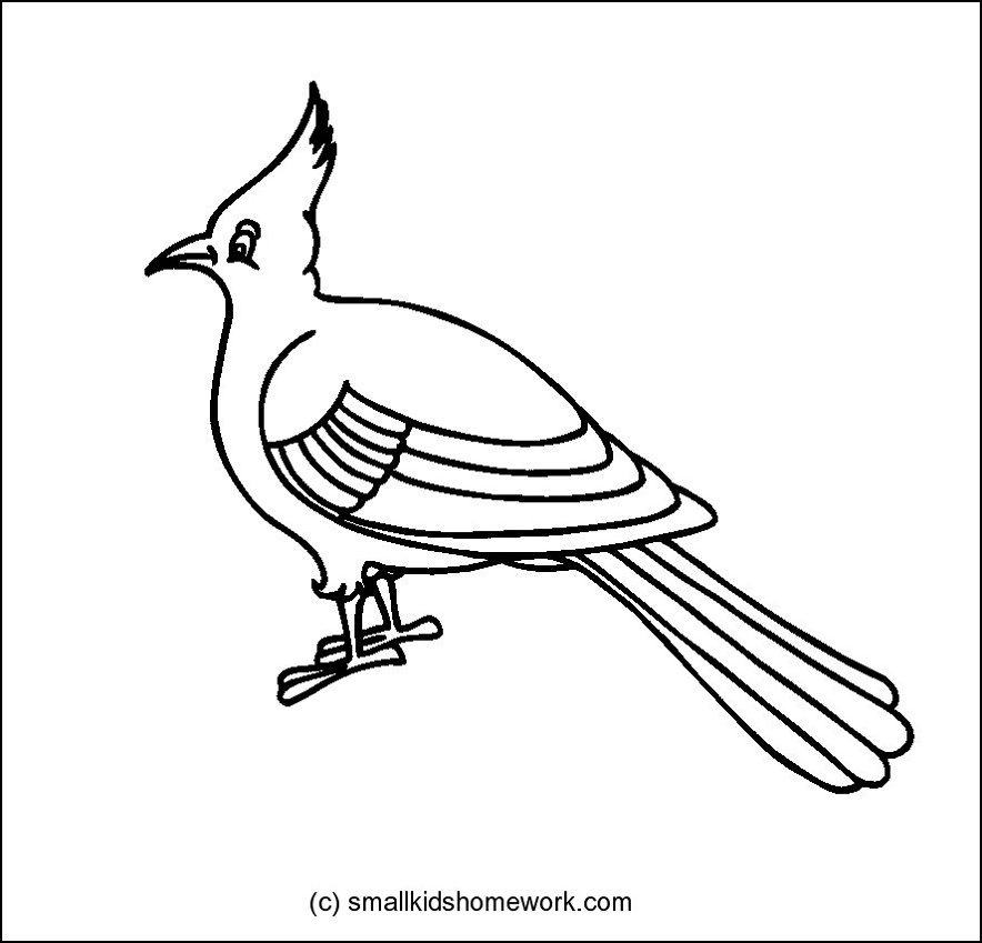 Bulbul clipart #3, Download drawings
