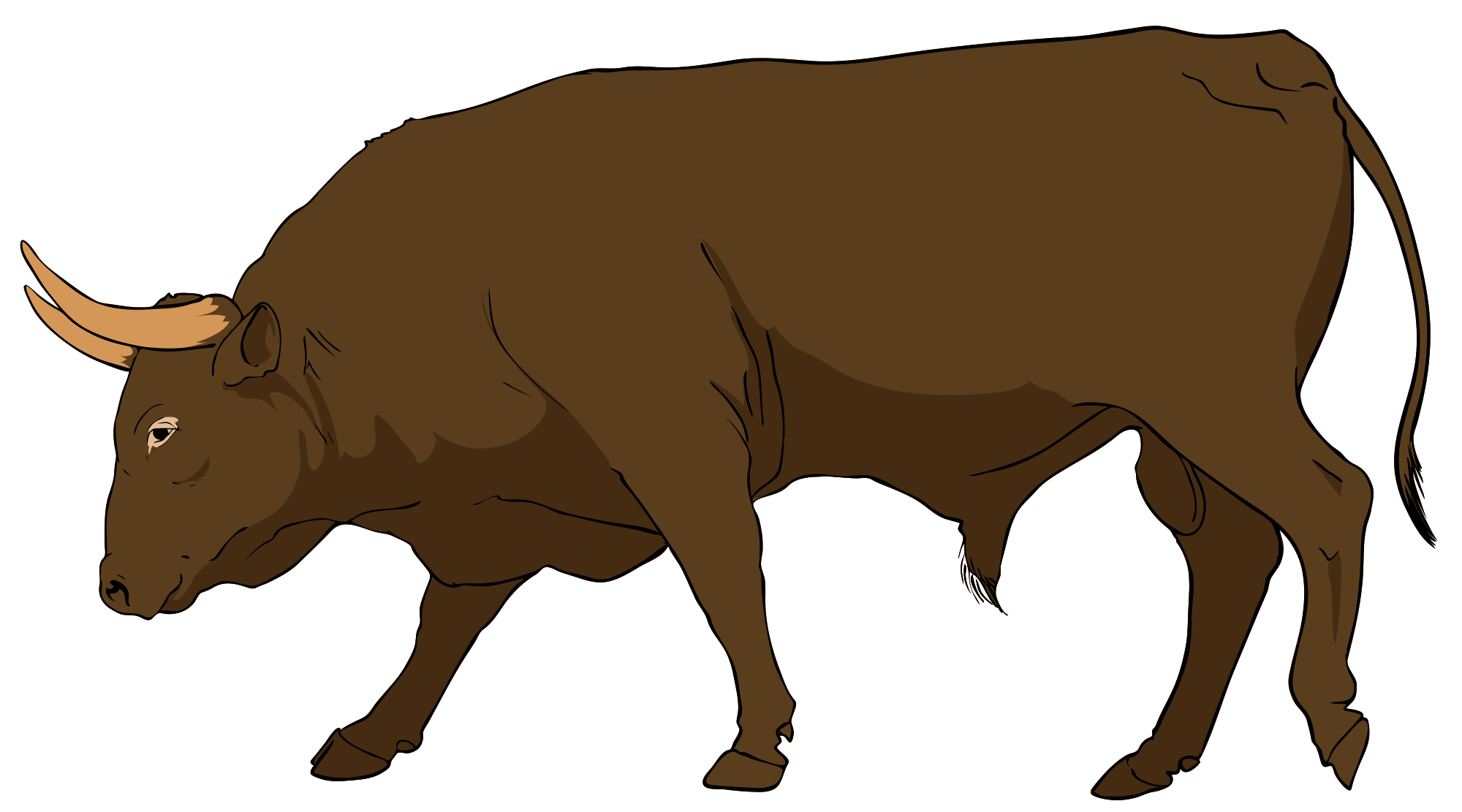 Bull clipart #7, Download drawings