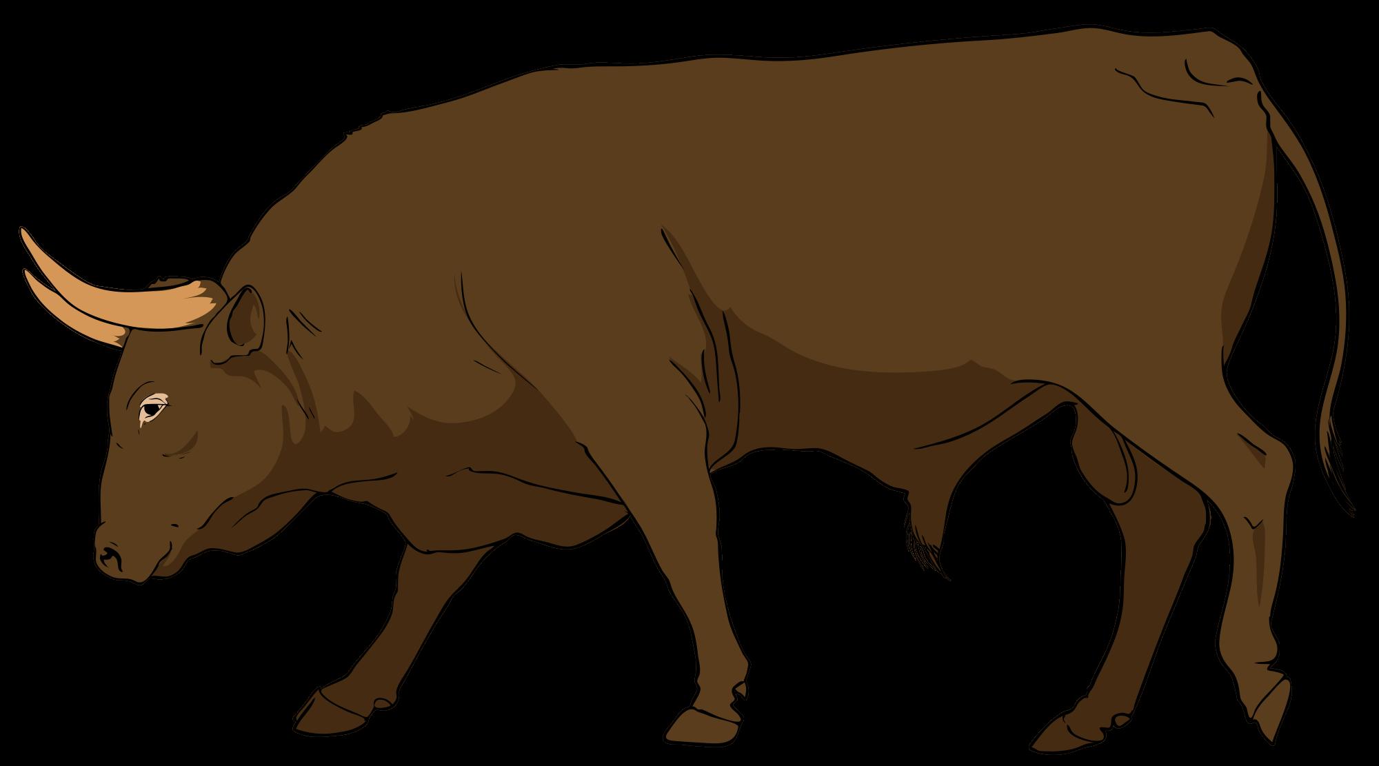 Bull clipart #7, Download drawings