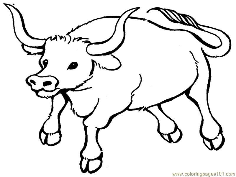 Bull coloring #19, Download drawings