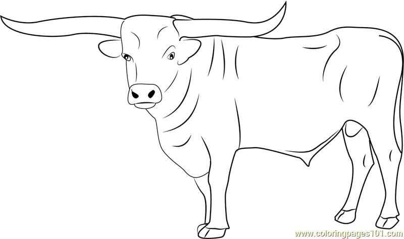 Bull coloring #9, Download drawings