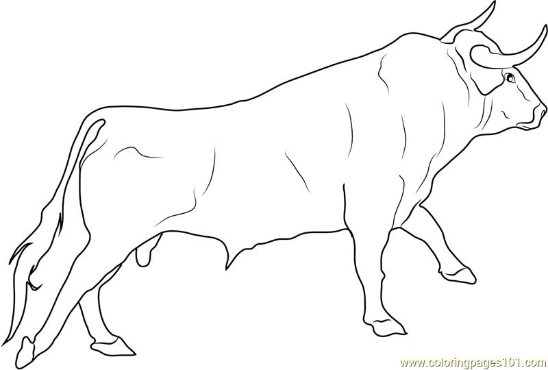 Bull coloring #17, Download drawings