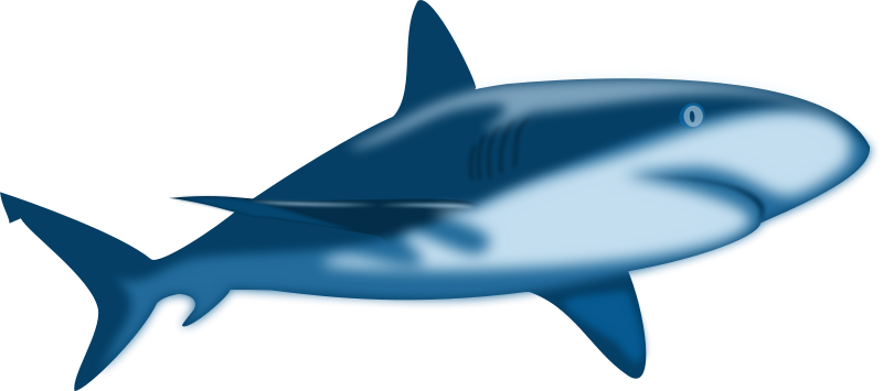 Whale Shark clipart #6, Download drawings