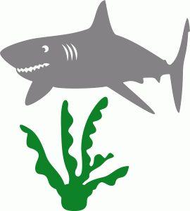 Bull Shark svg #3, Download drawings