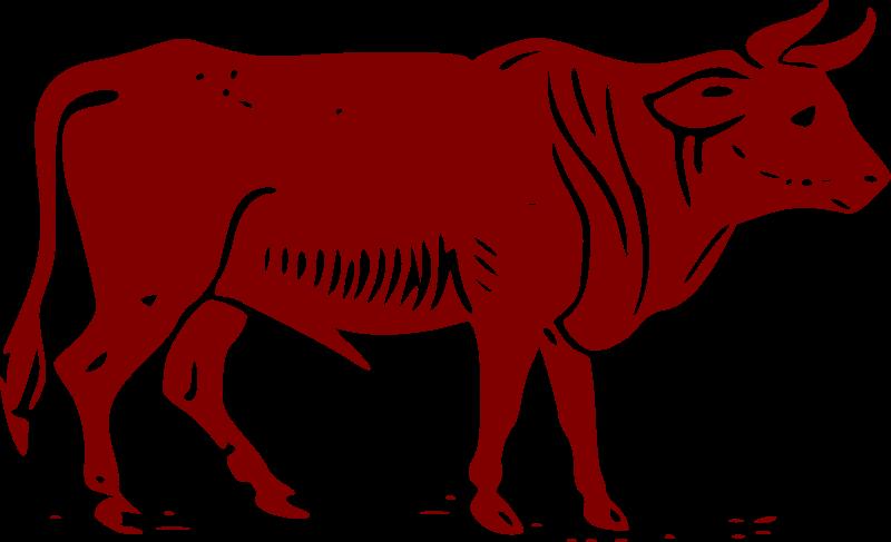 Bull svg #9, Download drawings