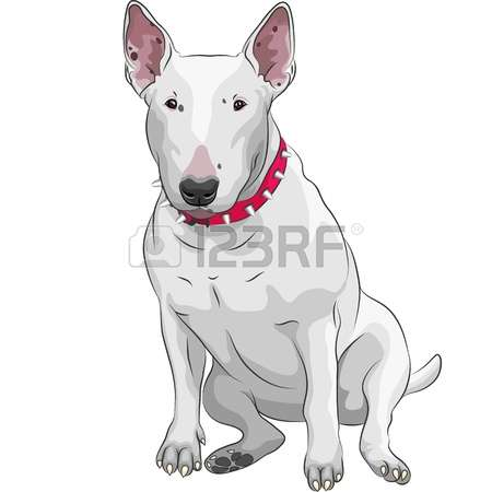 Bull Terrier clipart #2, Download drawings