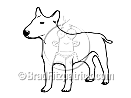 Bull Terrier clipart #17, Download drawings