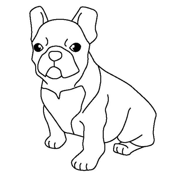 bulldogs coloring pages - bulldog coloring download bulldog coloring