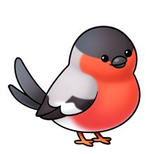 Bullfinch clipart #20, Download drawings