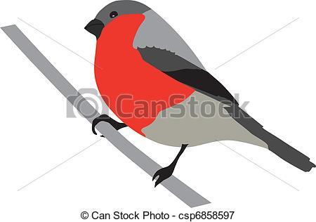 Bullfinch clipart #10, Download drawings