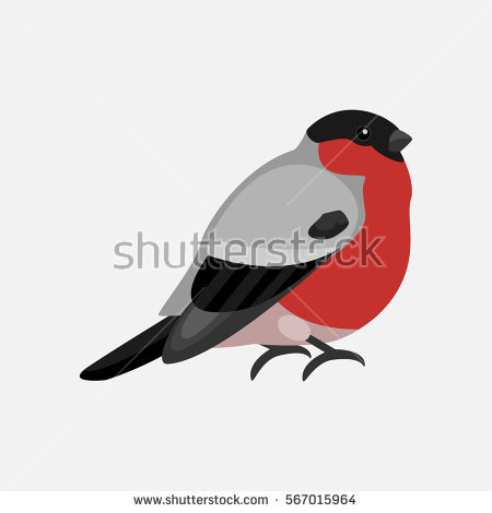 Bullfinch clipart #4, Download drawings