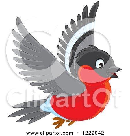 Bullfinch clipart #5, Download drawings