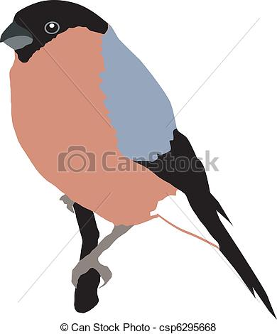 Bullfinch clipart #2, Download drawings