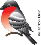 Bullfinch clipart #14, Download drawings