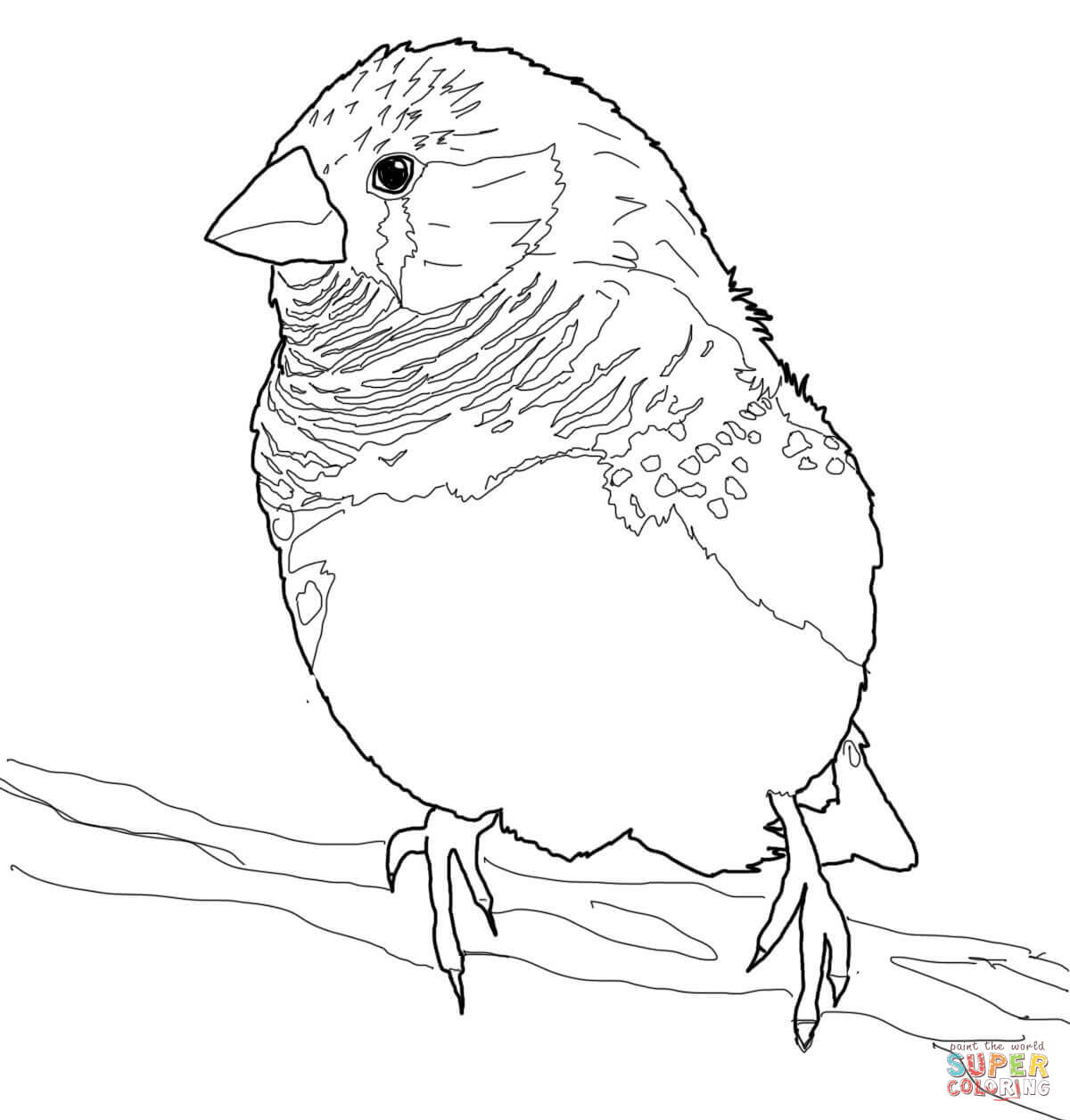 Finch coloring #13, Download drawings