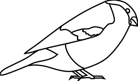 Bullfinch svg #17, Download drawings