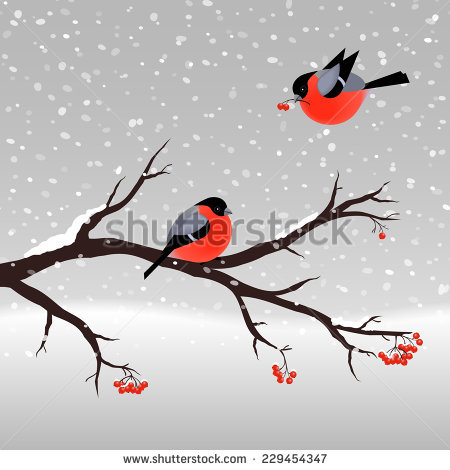 Bullfinch svg #16, Download drawings