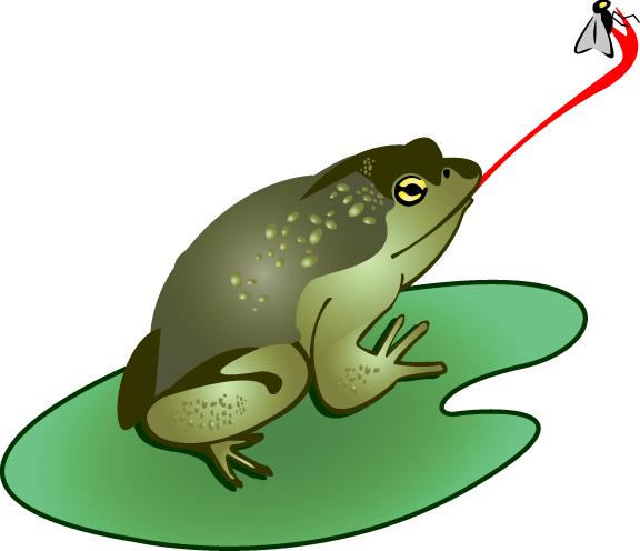 Bullfrog clipart #16, Download drawings