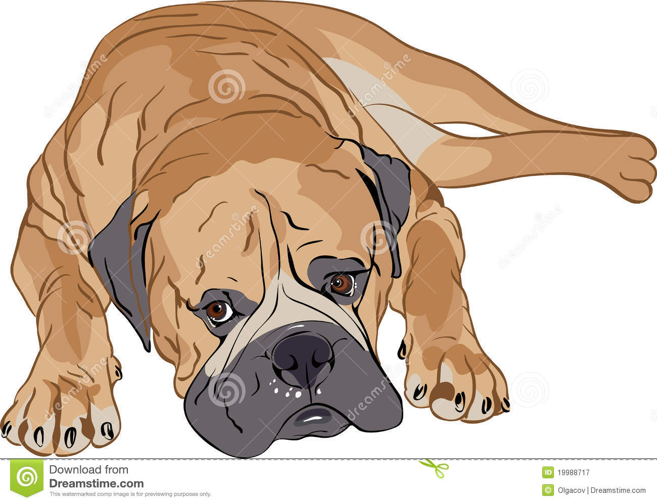Bullmastiff clipart #14, Download drawings