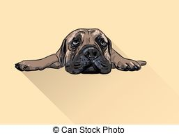 Bullmastiff clipart #15, Download drawings