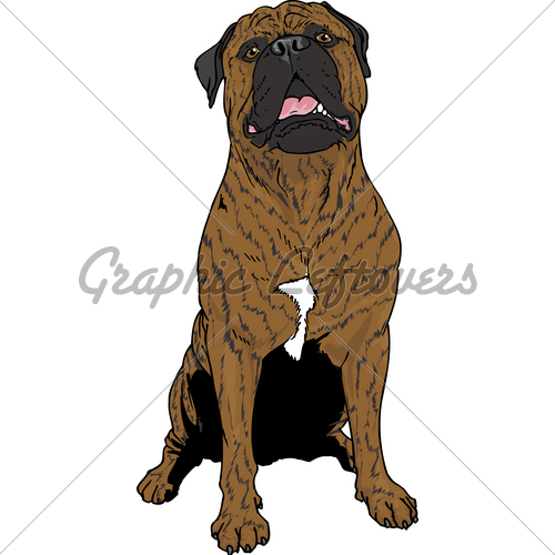 Bullmastiff clipart #20, Download drawings
