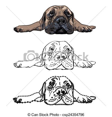 Bullmastiff clipart #2, Download drawings