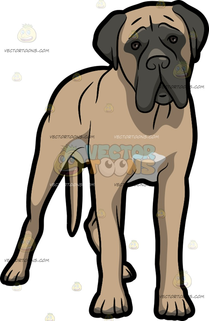 Bullmastiff clipart #13, Download drawings