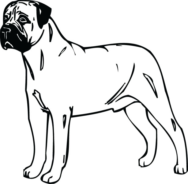 Bullmastiff clipart #4, Download drawings