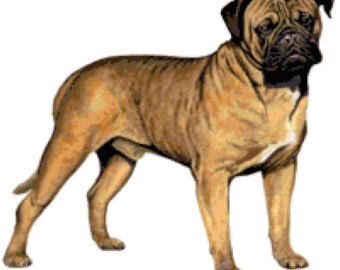 Bullmastiff svg #20, Download drawings