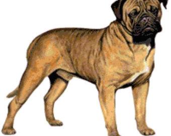 Bullmastiff svg #20, Download drawings